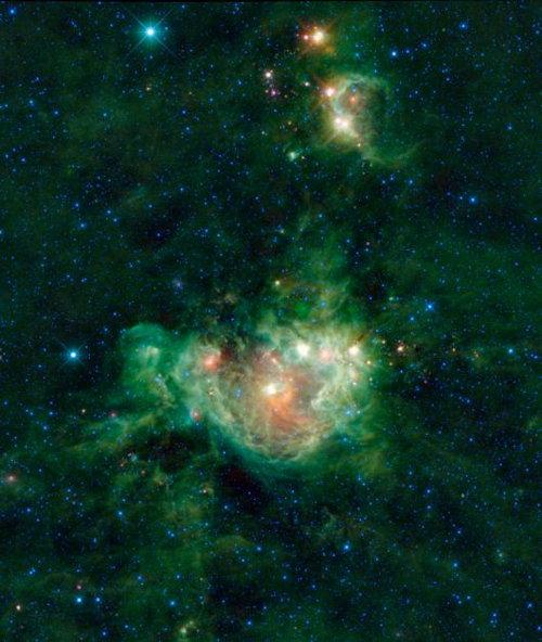 NGC 2174 (WISE)