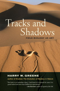 Book cover: Tracks and Shadows